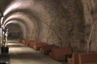 padova,mura di padova,comitato mura,turismo padova terme euganee,padovacard,sotto padova,sotterranei palazzo della ragione