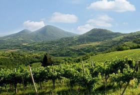 Colli-Euganei-in-Veneto.jpg