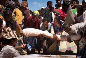 Mostra Madagascar_AAC1786.jpg