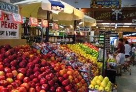 Boys-Farmers-Market-Delray-Beach-FL-002.JPG