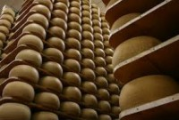 formaggio padova, villa formaggio, padova formaggio, villa formaggio padova, blog di padova, formaggio blog